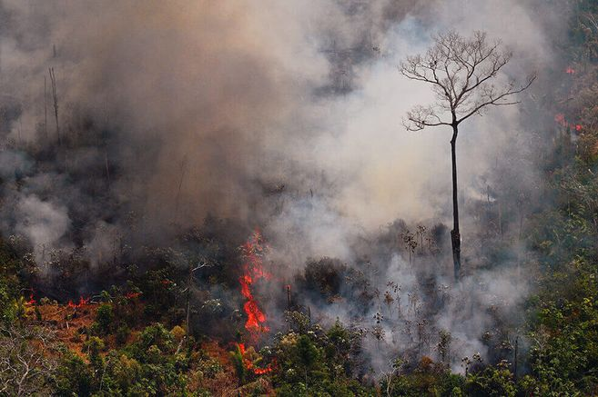 S6E6ONDCVRGNRDGRK4NRXONN2Q - La temporada de incendios en la Amazonía de Brasil arrancó más fuerte que nunca