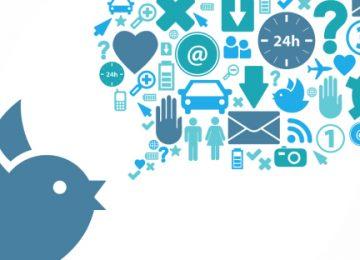 bird icons 360x260 - Mi reino por un tuit