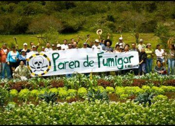 """fumigar thumb 360x260 - OMS: glifosato y cáncer. La Organización Mundial de la Salud calificó de cancerígeno al herbicida del """"milagro agrícola"""""""