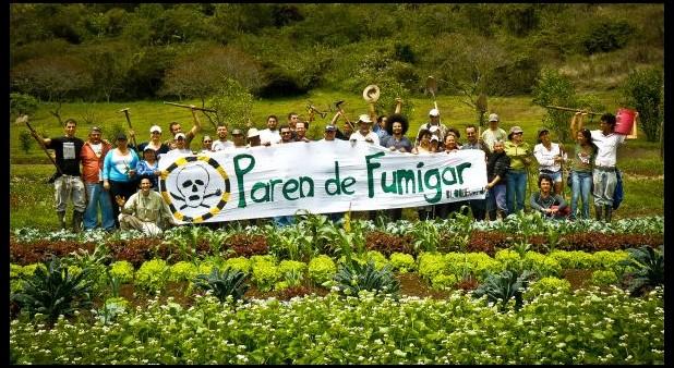 """fumigar thumb - OMS: glifosato y cáncer. La Organización Mundial de la Salud calificó de cancerígeno al herbicida del """"milagro agrícola"""""""
