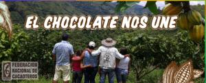BANNER EL CHOCOLATE NOS UNE 300x122 - Primera Feria Virtual de Cacaoteros para incentivar la recuperación económica de Cundinamarca.