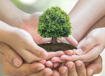 """unnamed 360x260 - Lanzan premio que se convertiría en un """"nobel ambiental"""""""