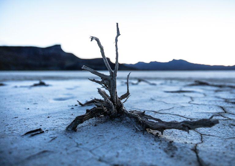 el cambio climatico irreversible 1401 4 768 - El calentamiento global, una amenaza mucho mayor que el covid-19 (Cruz Roja)