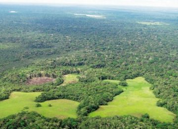 4TOHV2XRRVAPPNJ72JWPXYZKPI 360x260 - Noruega aportará $46 mil millones para combatir la deforestación en el Amazonas