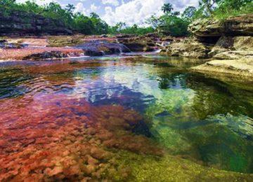664 villavicencio actividades visita el parque nacional natural sierra de la 360x260 - Cuidado con los parques naturales