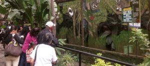 santacruz 300x132 - 79 toneladas de alimentos para la fauna silvestre de bioparques y zoológicos de la región