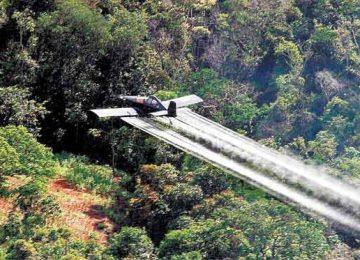 Fumigacion El Espectador 360x260 - Fumigación: nociva, ineficaz y costosa