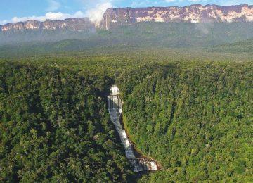 J2IHLESVWFH5BMIGOAOOSRW6ZY 360x260 - Las presiones detrás del desastre ambiental que vive la Amazonia.