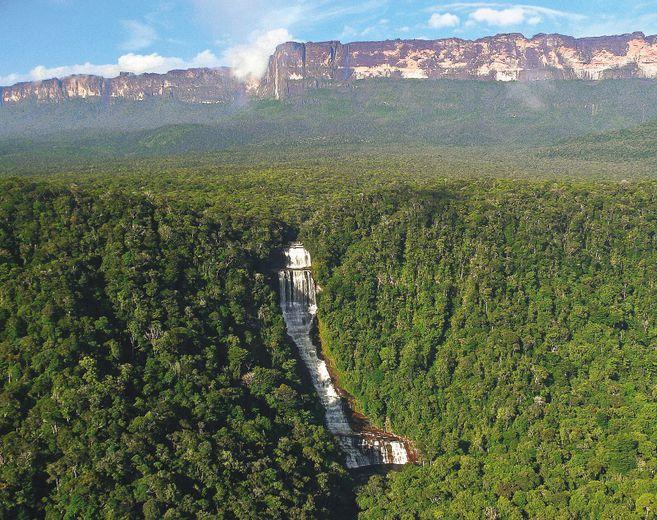 J2IHLESVWFH5BMIGOAOOSRW6ZY - Las presiones detrás del desastre ambiental que vive la Amazonia.