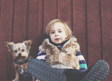child 1031047 1920 360x260 - Las 5 mejores mascotas para niños.