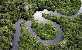 descarga 25 - Paola Andrea Arias, la colombiana que participó en el informe del IPCC